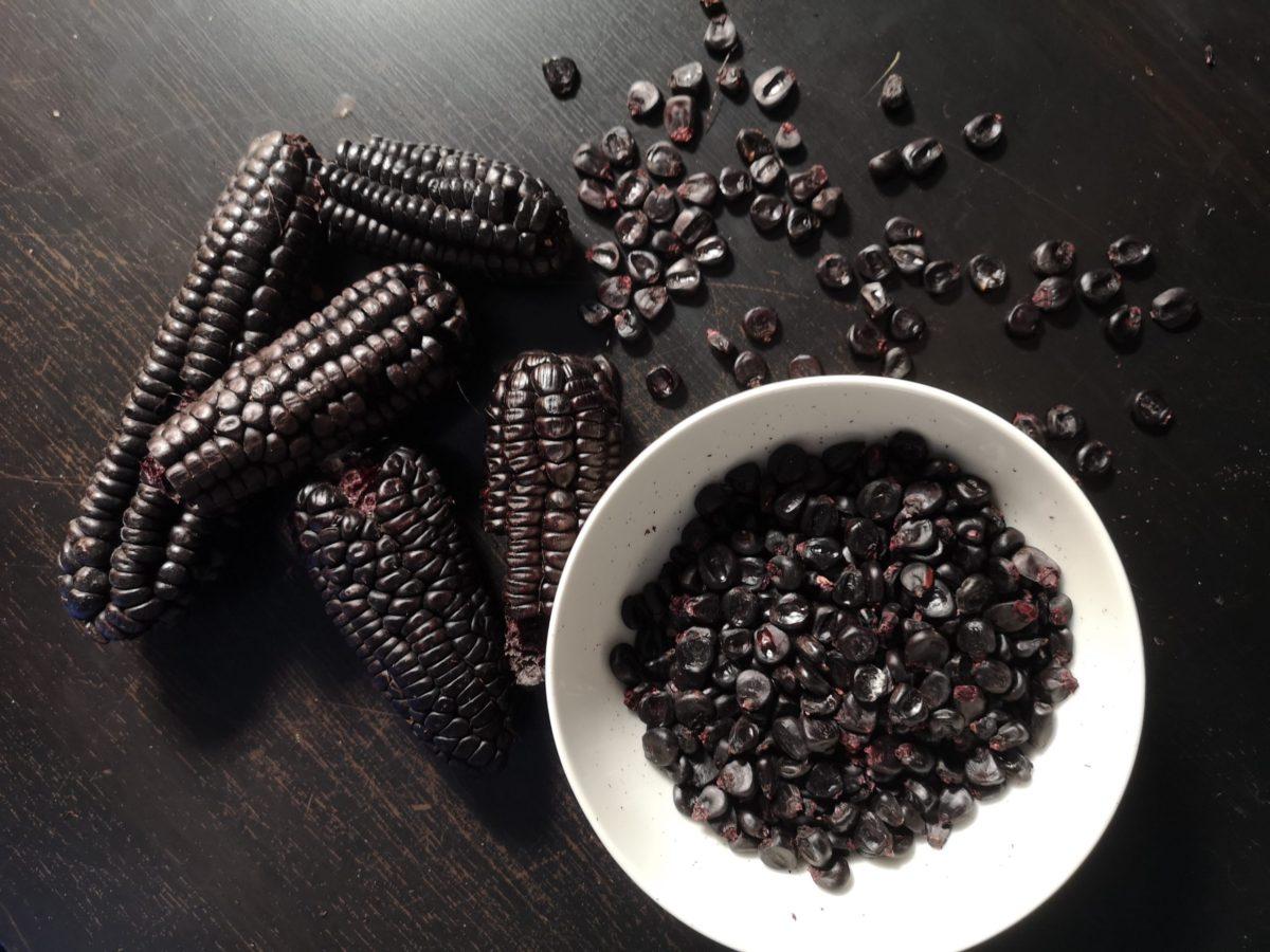 Il mais morado – il mais viola più amato del Sud America